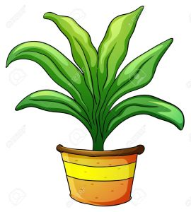 14132370-illustration-of-a-plant-pot-on-a-white-background-Stock-Vector-plants