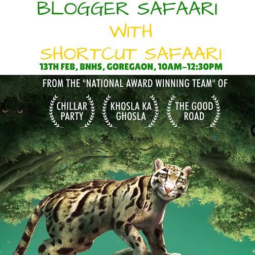 blogger safaari