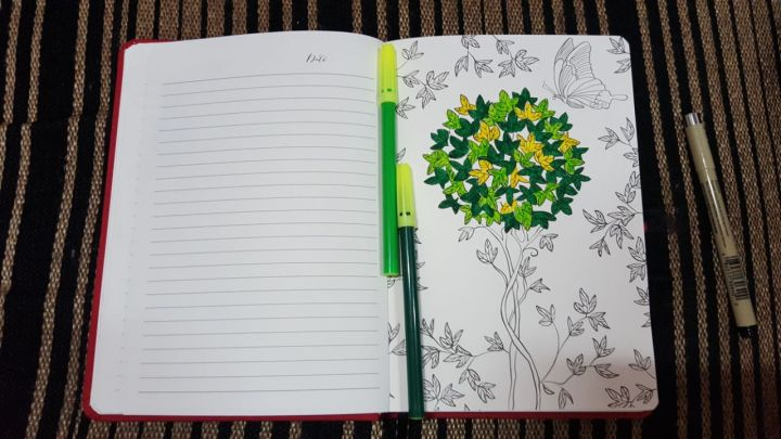 matrika-diary-review