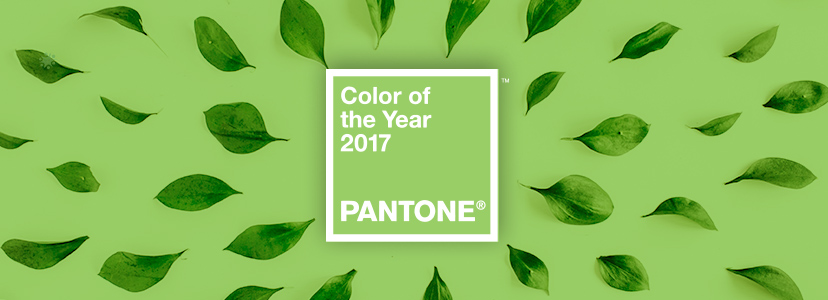 pantone-color-of-the-year-2017-design-info